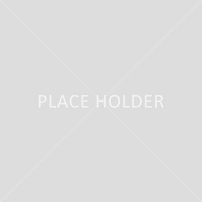 place_holder