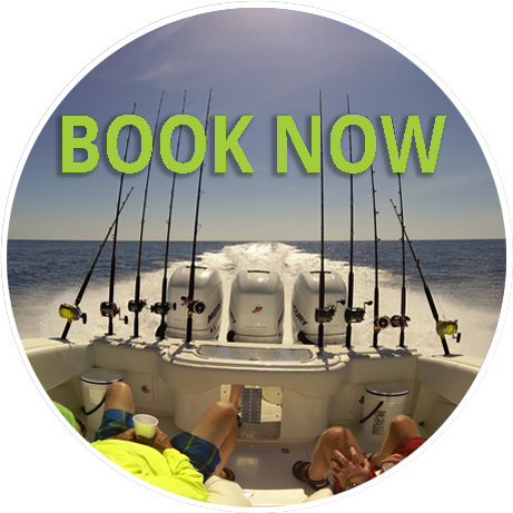 Book your offshore fishing charter now