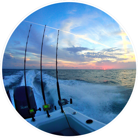 St Petersburg Deep Sea Fishing Charters