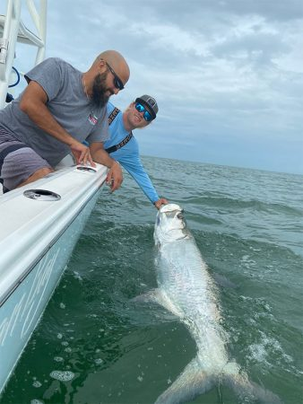Huge Tarpon caught in St Pete Beach